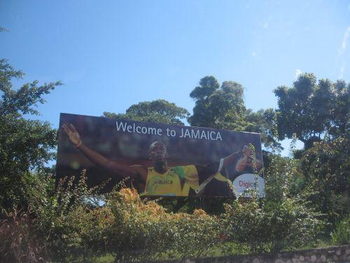 Jamma2010 542.jpg